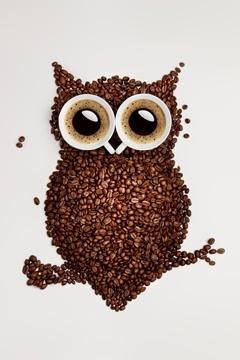 นกฮูกทำจากเมล็ดกาแฟ