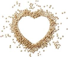Quinoa มีรูปร่างเหมือนหัวใจ