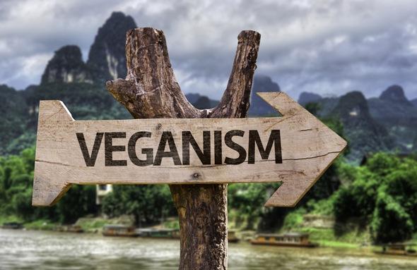 มังสวิรัติเขียนบนป้ายไม้