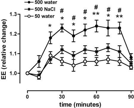 กราฟแสดงให้เห็นว่าน้ำสามารถเพิ่มการเผาผลาญได้อย่างไร